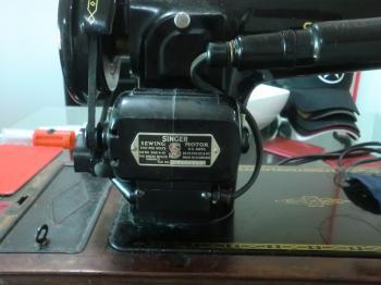 CIMG5295.JPG